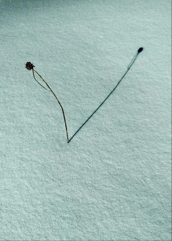 Немного любительского минимализма на разные темы Минимализм, Фотография, Фото на тапок, Длиннопост