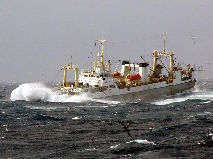 Морские истории 2 Море, Рыба, Работа