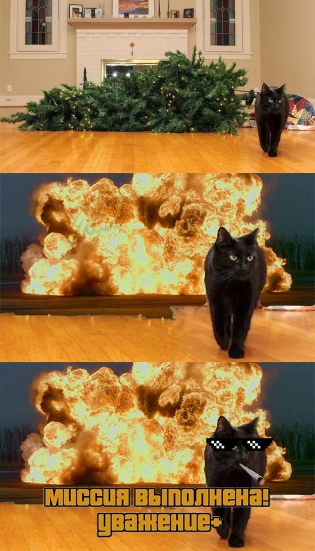 Кот vs ёлка Кот, Новогодняя елка, Мемы