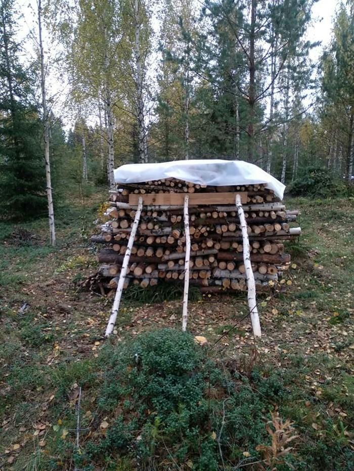 Дрова. Финляндия, Рассказ, Блог, Длиннопост