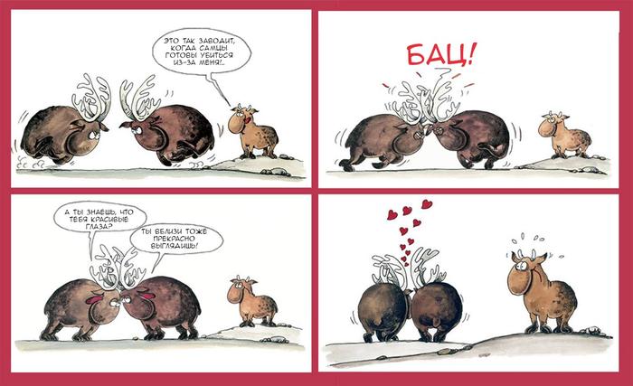 Самцы Комиксы, Arkas, Животные, Гомосексуализм, Любовь