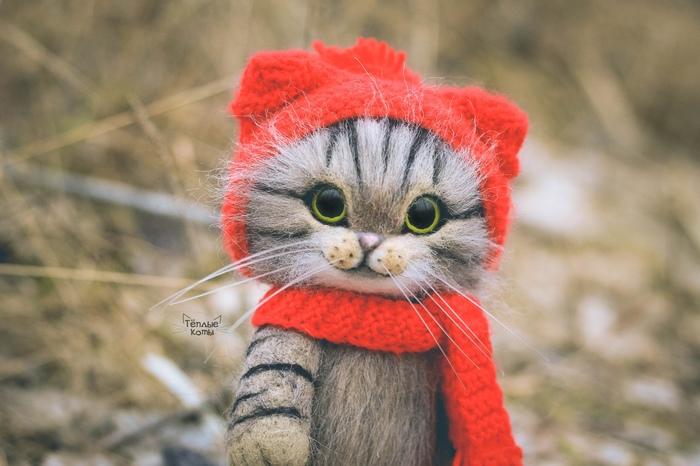 Тёплый котик Сухое валяние, Валяние, Кот, Творчество, Арт, Ручная работа, Игрушки, Рукоделие без процесса, Длиннопост