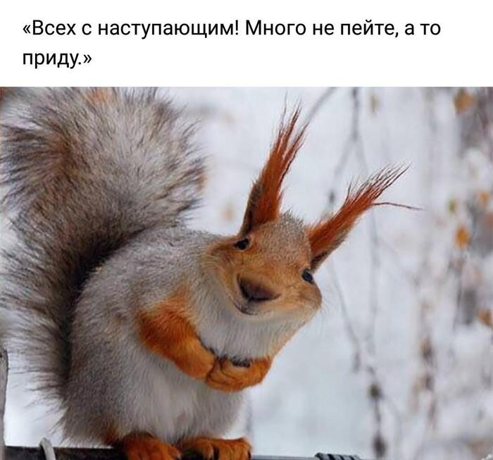 https://cs7.pikabu.ru/post_img/2018/12/06/8/1544104433190419763.jpg
