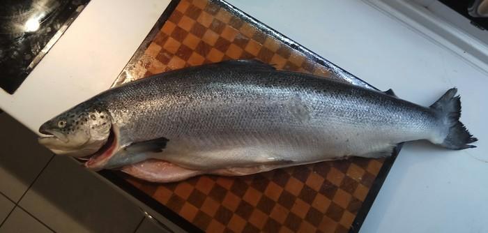 Насколько выгодно покупать красную рыбу целиком? Полезное, Разделка рыбы, Рыба, Лосось, Кулинария, Длиннопост, Экономия