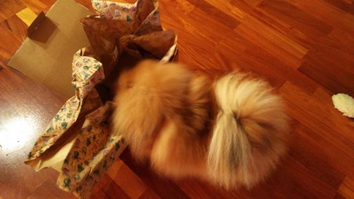 АДМ Пост благодарности. Дед Мороз, Обмен подарками, Посылка, Благодарность, Отчет по обмену подарками, Тайный Санта