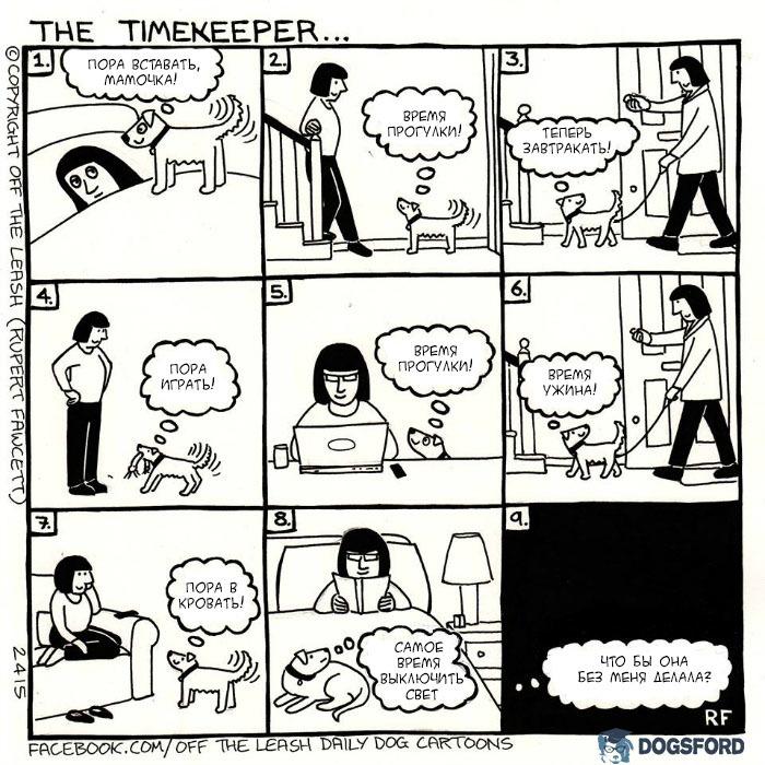 Тайм-менеджмент Собака, Прогулка, Offtheleashdogcartoons, Комиксы