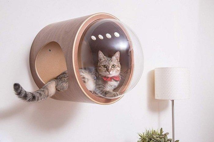 Дизайнерский домик для кота в космическом стиле Кот, Фотография