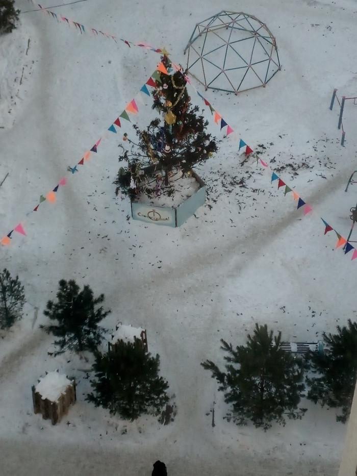 Новый год настает Омск, Новый Год, Новогодняя елка, Длиннопост, Фотография