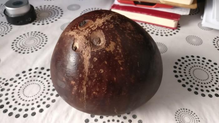 Кокосик Китай, Кокос, Еда, Интересное, Длиннопост