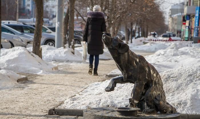 Памятник бездомной собаке в Екатеринбурге Екатеринбург, Идея, Памятник, Собака, Россия, Фотография