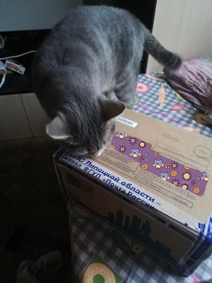 Коробка счастья из Боринского в Ярославль Подарок, Обмен подарками, Новогодний обмен подарками, Длиннопост, Отчет по обмену подарками