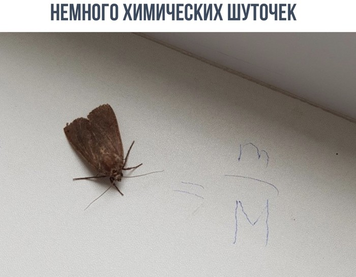 Моль Химия, Моль, Юмор, ВКонтакте