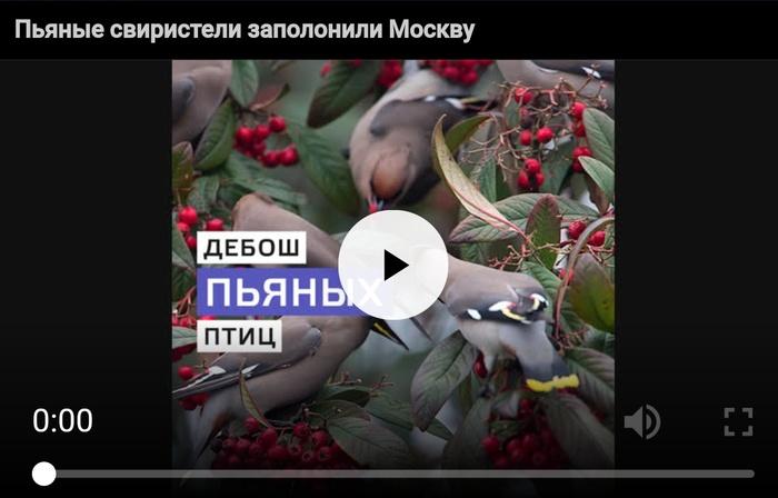 Мастера заголовков)) Заголовок, Супер новость, Длиннопост
