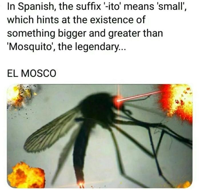 El Mosco Испанский язык, Комары