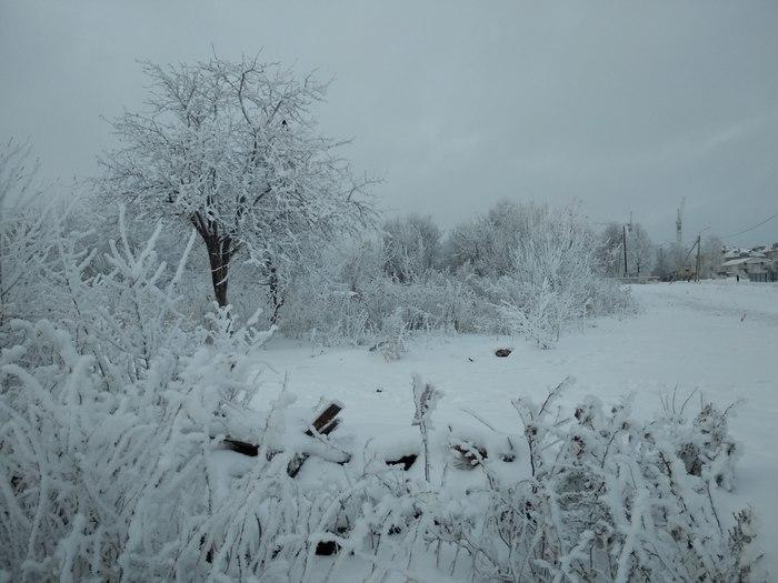 Зима в наших краях Зима, Фотография, Красота, Длиннопост