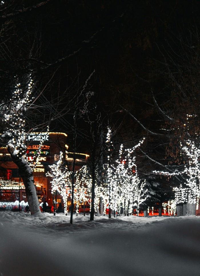 Новый год Новый Год, Фотография, Гирлянда, Новогодняя елка, Длиннопост