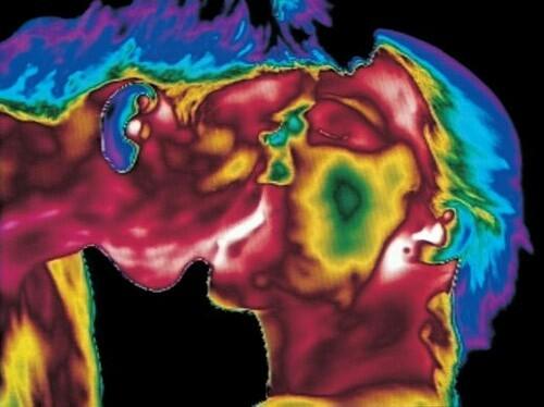 Зарождение жизни. Необыкновенные фото Леннарта Нильсона. Фотография, Подсмотрено, Зарождение жизни, Эмбрион, Длиннопост