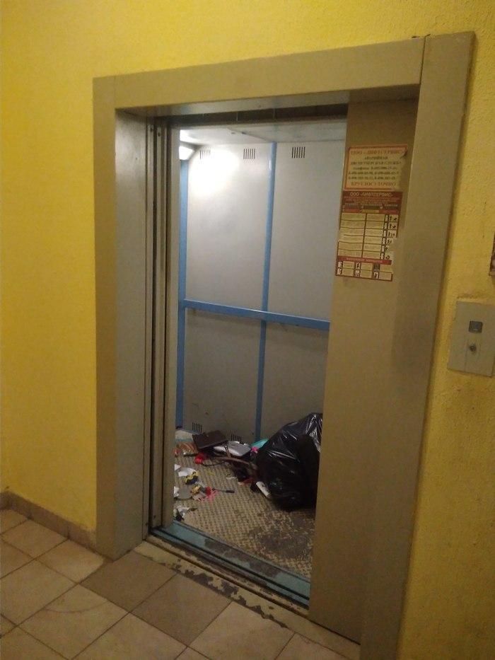 Порвался мусорный пакет? Не беда - просто оставь в лифте Свинья, Мусор, Длиннопост