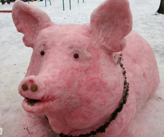 Минская снежная свинья Снег, Минск, Свинья, Длиннопост