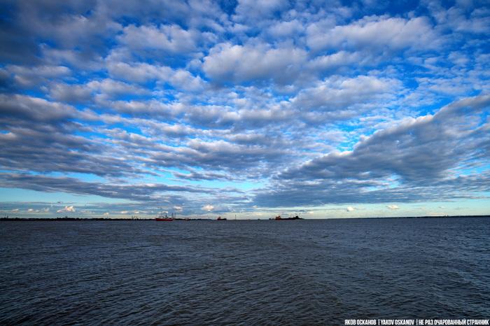 Сколько морей омывают Россию и что означают их названия Путешествия, География, Море, Россия, Длиннопост