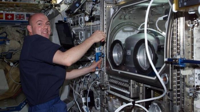 Космонавт позвонил спасателям с МКС Прикол, Юмор, Космос, Космонавт, Мкс, Новости, Интересное, Познавательно
