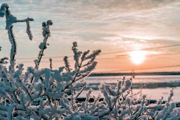 Зимний Архангельск Sony, Фотография, Архангельск, Зима, Длиннопост