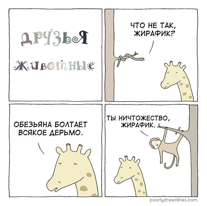 Друзья животные