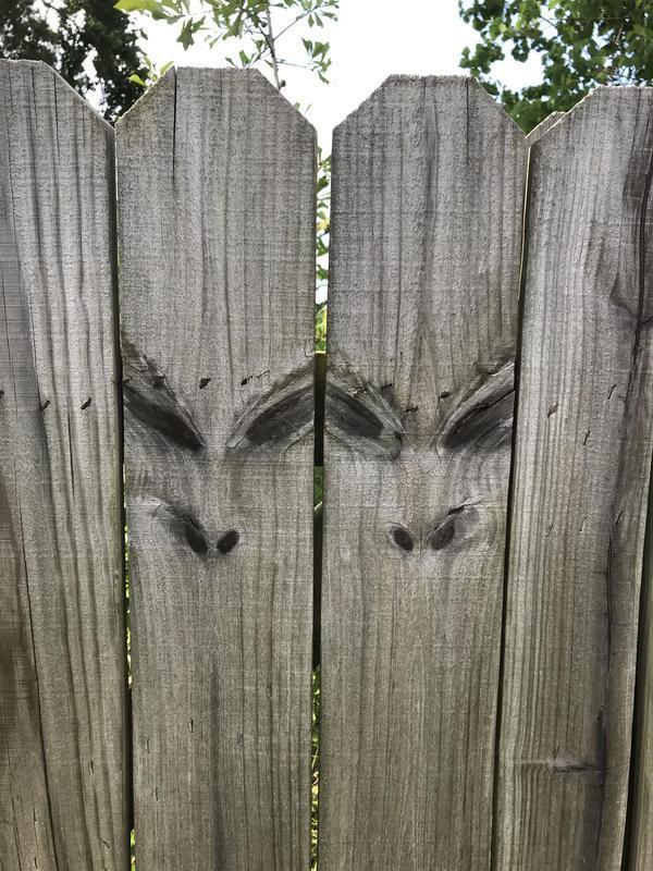 Подозрительный забор