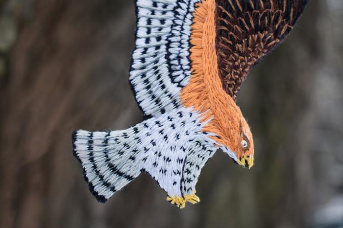 Вышитый орёл Хааста Рукоделие без процесса, Брошь, Вымерший вид, Орел, Вышивка гладью, Длиннопост