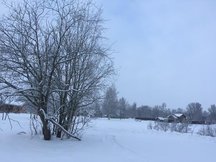 Шуваловка, волшебство зимы и зимнее солнце Зима, Красота природы, Длиннопост