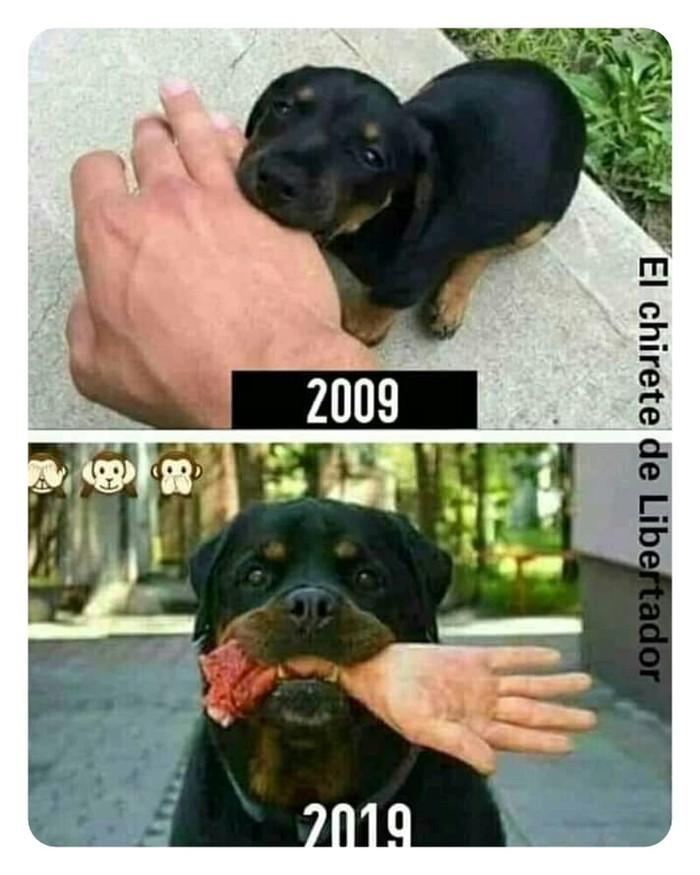 10 лет 10 лет, Из сети, Картинки, Длиннопост