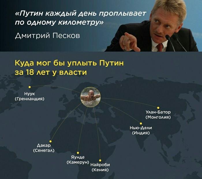 Уплывай! Путин, Пловцы, Вконтакте
