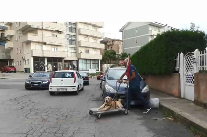 ЧЕЛОВЕК, с большой буквы. Италия, Собака, Добро, Хороший человек, Видео, Длиннопост, Хороший мальчик