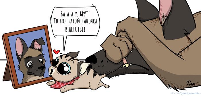 Маленький Брут Брут и пикси, Комиксы, Милота