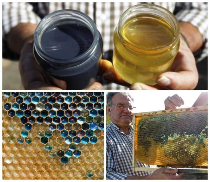 Синий мед Мед, M&ms, Пчеловодство, Улей, Красители, Отходы