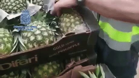 Перевозка запрещенных веществ