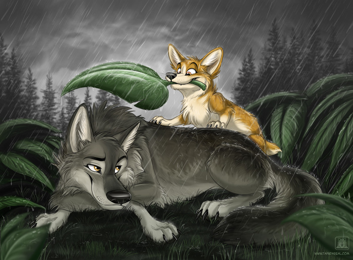 By TaniDaReal Begin of a friendship Фурри, Tanidareal, Animal Art, Furry Art, Furry feral, Furry wolf, Furry Canine