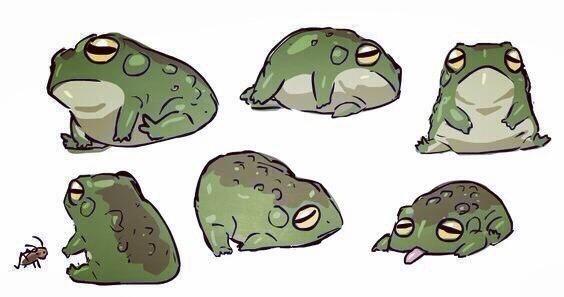 Состояние в понедельник. Маленькая, уставшая жабка.