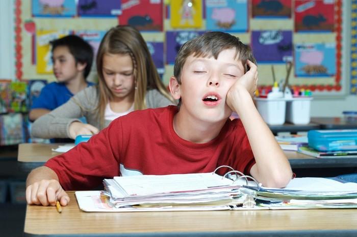 О Семейном Образовании в РФ, или в школе можно учиться из дома. Семейное образование, Школа, Альтернатива, Закон об образовании, Длиннопост
