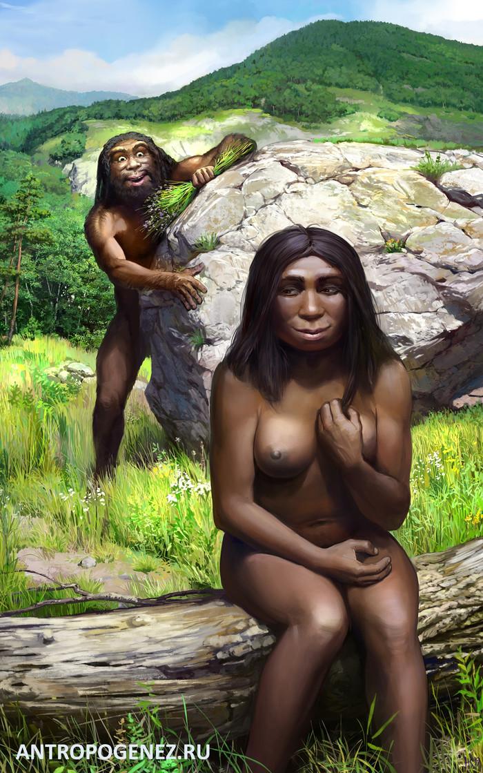 Денисовский человек добивается сердца неандерталки Антропогенез, Антропогенезру, Люди, Неандерталец