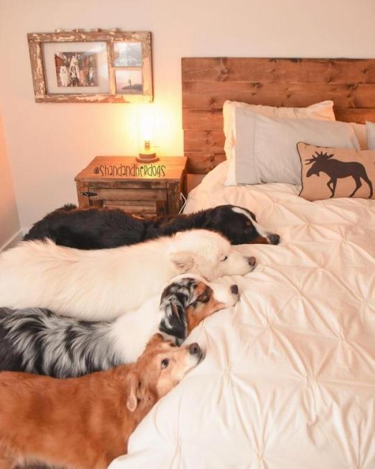 Когда на кровать нельзя...