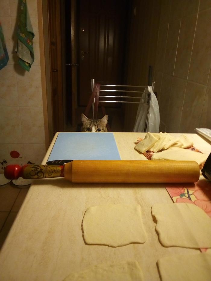 Моя кухня и мой постоянный помощник) Мужская кулинария, Пирожок, Кот, Холостяк, Еда, Длиннопост