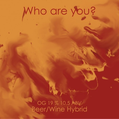 Что мы пили в январе Пиво, Крафт, Гозе, Дегустация, Длиннопост