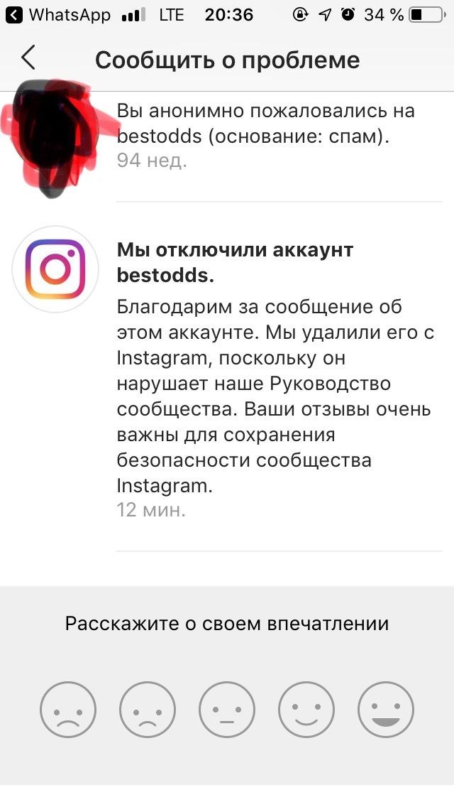 Как быстро(не очень)борется Инстаграм со спамом и мошенничеством Instagram, Спам, Длиннопост, Скриншот