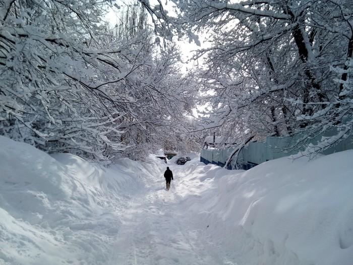 Снежный Саратов Саратов, Снег, Снегопад, Природа, Вид, Балдеж