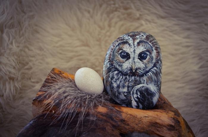 Мои каменные совы #3 Роспись по камню, Акрил, Птицы, Сова, Неясыть, Роспись