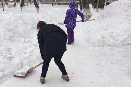 Саратовских учителей опять погнали убирать снег Саратов, Уборка снега, Субботник, Учитель