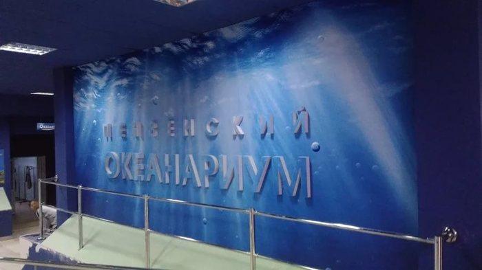 И снова здравствуйте! Пензенский океанариум, Рыба, Океанариум, Длиннопост
