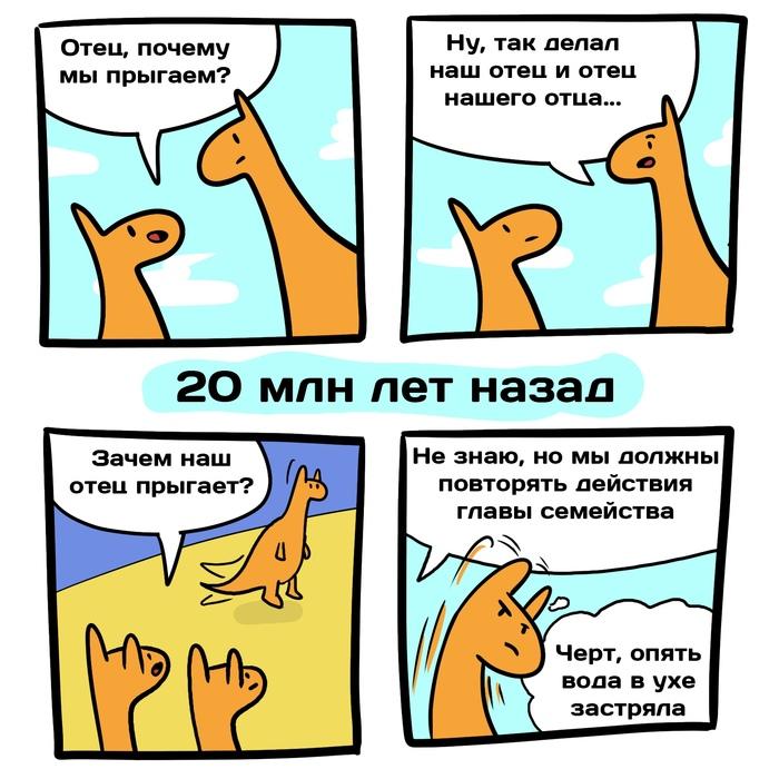 Новость №766:Предки кенгуру начали прыгать 20 миллионов лет назад Образовач, Кенгуру, Комиксы