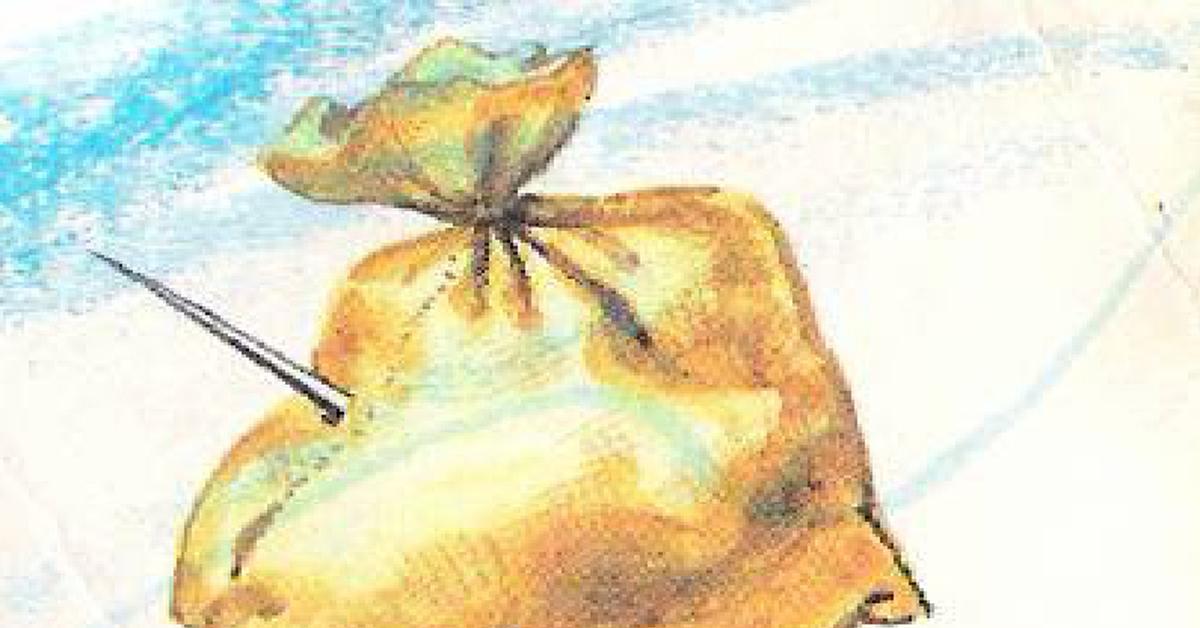 картинка на пословицу шила в мешке не утаишь отказались яиц молочных